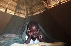 Life savers: Mosquito Nets